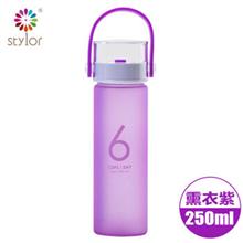 Stylor花色单个玻璃双层感温杯STB-1004