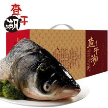 查干湖叁号胖头鱼998型(提货券)