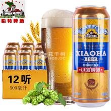 哈尔滨哈特(Hate)小麦王啤酒500ml(12听/箱)
